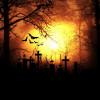 Top 5 International Horror Films