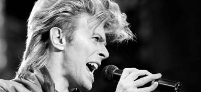 David Bowie Tribute: North East fans reveal their fondest memory of the idol