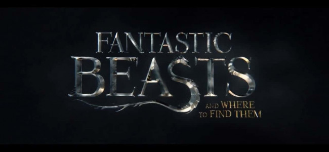 Fantastic Beasts and Where to Find Them: Can it live up to Harry Potter?