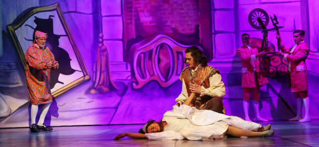 REVIEW: Sleeping Beauty adds Christmas sparkle to the Sunderland Empire!