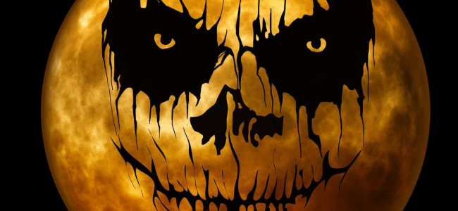 Our top five spooktacular films to watch this Halloween!