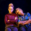 Review: Don't Forget the Birds @ Live Theatre