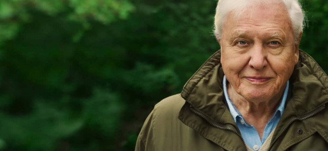 Movie Review: David Attenborough: A Life On Our Planet